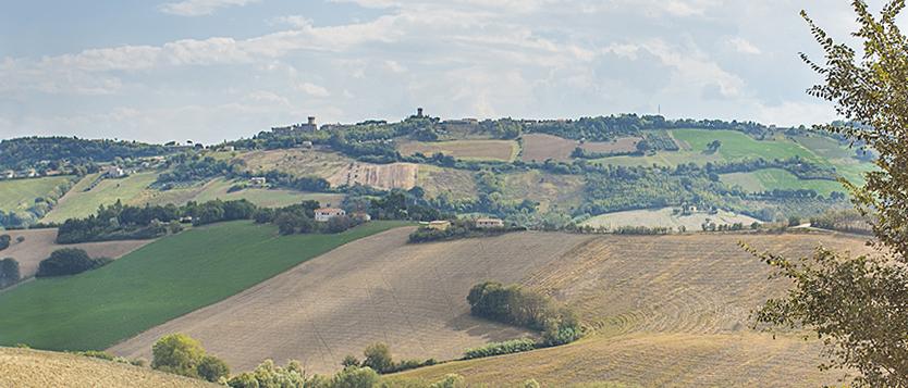 panorama dintorni